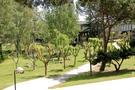 campus1.jpg