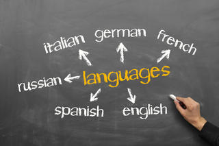 Choose the Most Suitable Language Course Adapted to Your Needs